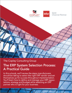 Ebook-The-ERP-System-Selection-Process-232x300.png