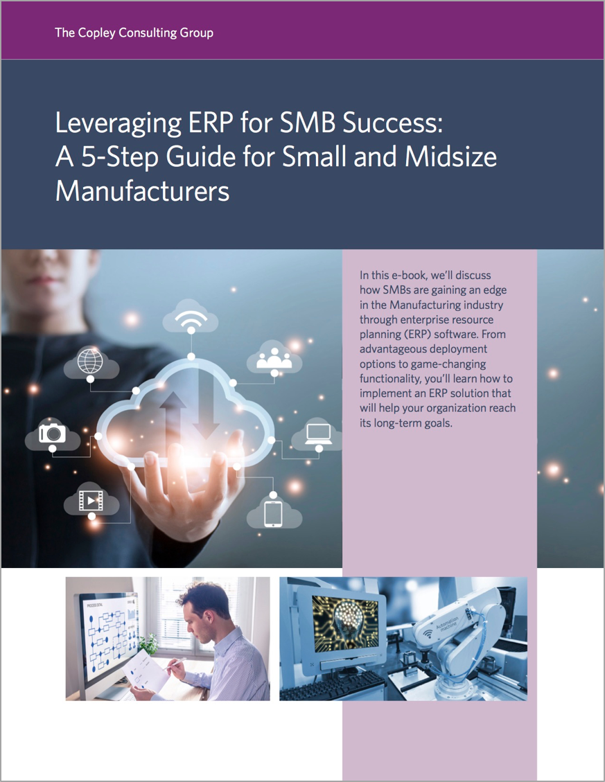 Leveraging ERP for SMB Success Cover.png